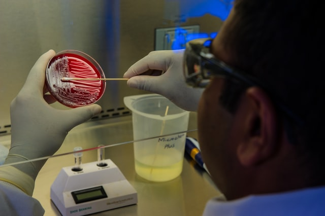 Role of microbiologist